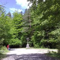 Un paseito por los caminos del valle de Ordesa