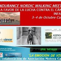 II Endurance nordic walking meeting