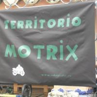 Jarana Motrix 2011